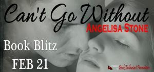 Can't Go Without Book Blitz